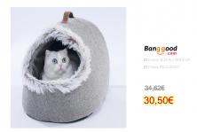Cat Room Cat's Home